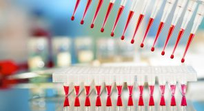Tools for PCR amplification of DNA